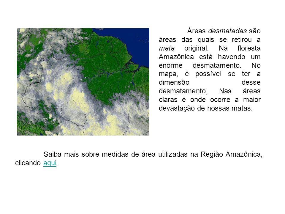 Áreas desmatadas são áreas das quais se retirou a mata original. Na floresta Amazônica está havendo um enorme desmatamento. No mapa, é possível se ter