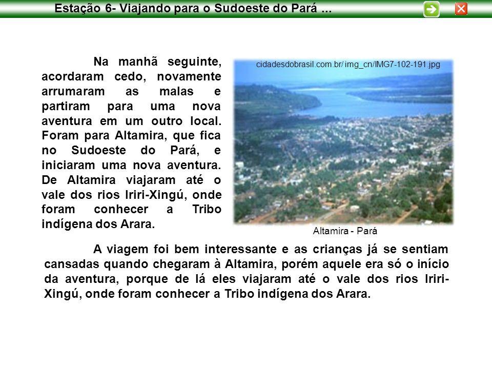 Estação 6- Viajando para o Sudoeste do Pará... Na manhã seguinte, acordaram cedo, novamente arrumaram as malas e partiram para uma nova aventura em um