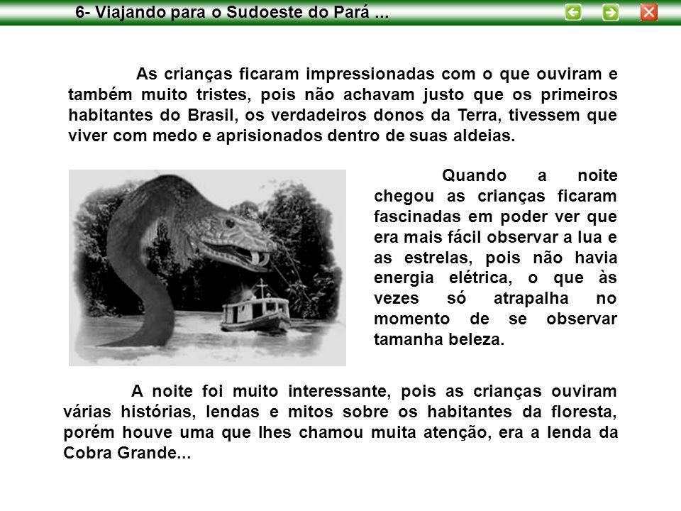 As crianças ficaram impressionadas com o que ouviram e também muito tristes, pois não achavam justo que os primeiros habitantes do Brasil, os verdadeiros donos da Terra, tivessem que viver com medo e aprisionados dentro de suas aldeias.