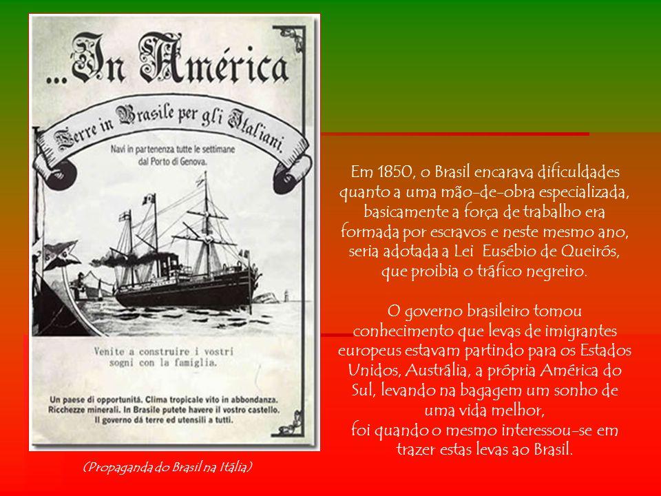 Os primeiros imigrantes a deixarem a Itália na época da grande imigração (1870-1920), foram sobretudo os vênetos, cerca de 30% do total, seguidos dos habitantes de Campânia, Calábria e Lombardia.