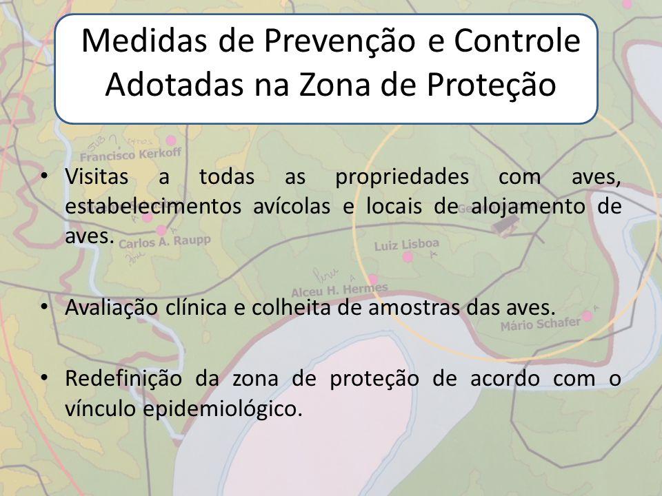 Medidas de Prevenção e Controle Adotadas na Zona de Proteção Visitas a todas as propriedades com aves, estabelecimentos avícolas e locais de alojament