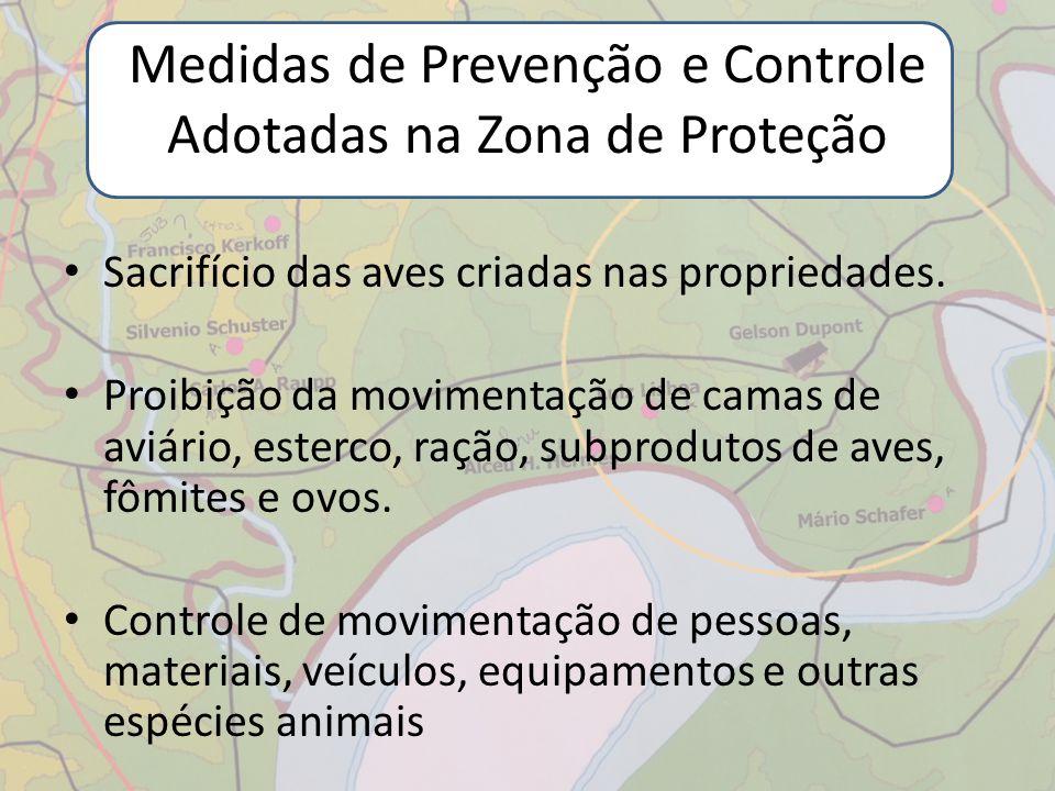 Medidas de Prevenção e Controle Adotadas na Zona de Proteção Sacrifício das aves criadas nas propriedades. Proibição da movimentação de camas de aviár