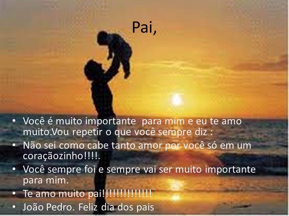 Pai, Você é muito importante para mim e eu te amo muito.Vou repetir o que você sempre diz : Não sei como cabe tanto amor por você só em um coraçãozinho!!!!.