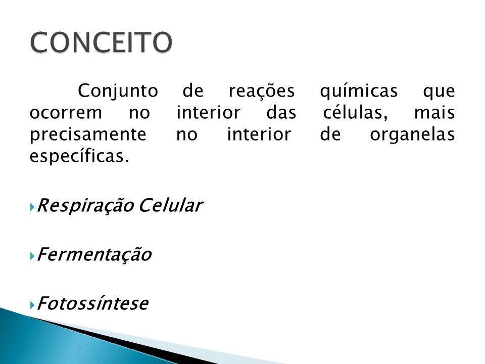 Conjunto de reações químicas que ocorrem no interior das células, mais precisamente no interior de organelas específicas. Respiração Celular Fermentaç