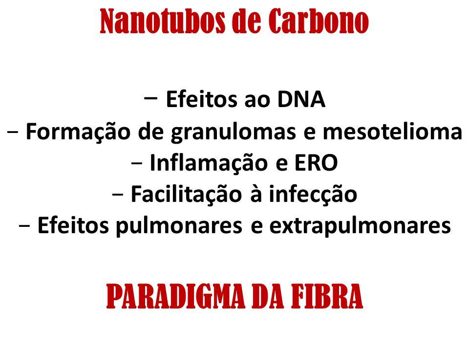 Nanotubos de Carbono Efeitos ao DNA Formação de granulomas e mesotelioma Inflamação e ERO Facilitação à infecção Efeitos pulmonares e extrapulmonares