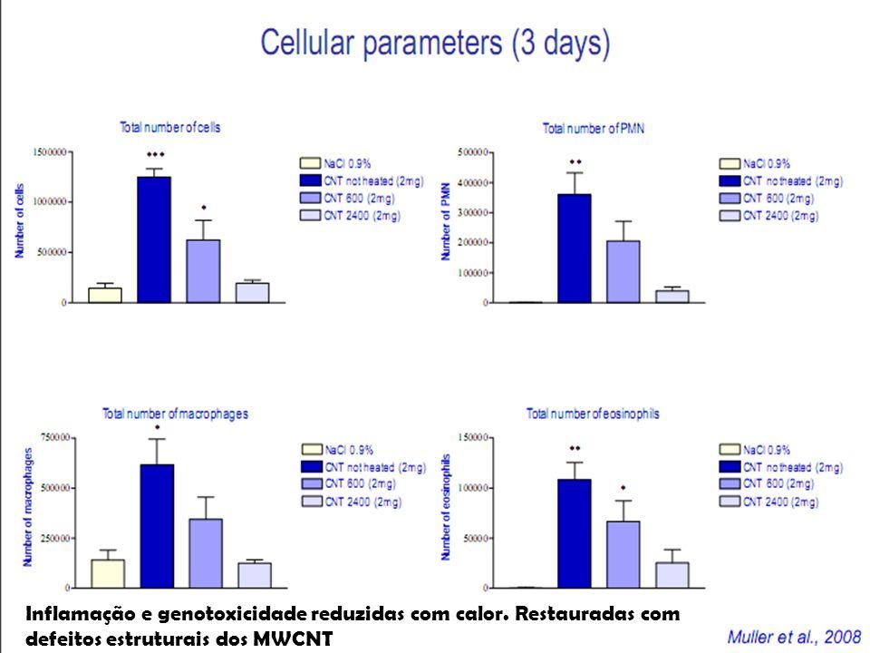 Inflamação e genotoxicidade reduzidas com calor. Restauradas com defeitos estruturais dos MWCNT