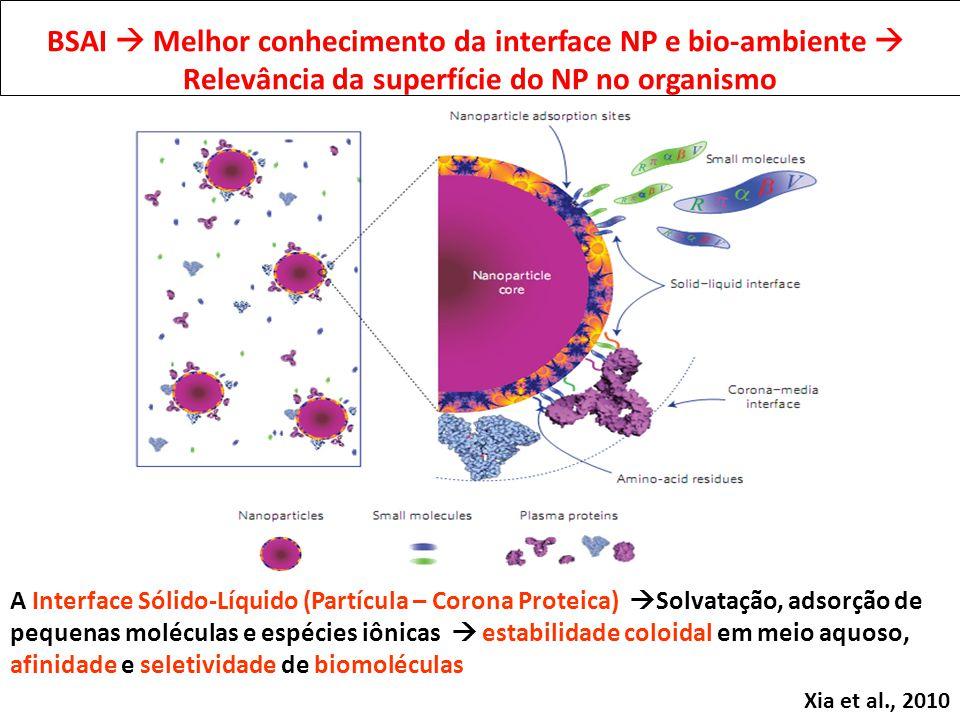 Xia et al., 2010 A Interface Sólido-Líquido (Partícula – Corona Proteica) Solvatação, adsorção de pequenas moléculas e espécies iônicas estabilidade coloidal em meio aquoso, afinidade e seletividade de biomoléculas BSAI Melhor conhecimento da interface NP e bio-ambiente Relevância da superfície do NP no organismo