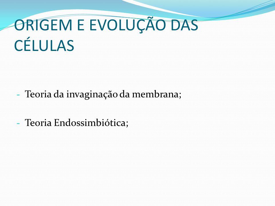 ORIGEM E EVOLUÇÃO DAS CÉLULAS - Teoria da invaginação da membrana; - Teoria Endossimbiótica;