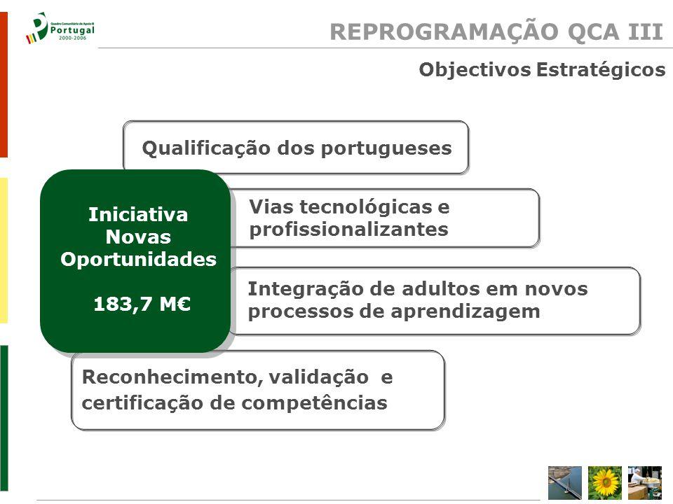 Objectivos Estratégicos Reconhecimento, validação e certificação de competências Qualificação dos portugueses Integração de adultos em novos processos de aprendizagem Vias tecnológicas e profissionalizantes Iniciativa Novas Oportunidades 183,7 M REPROGRAMAÇÃO QCA III