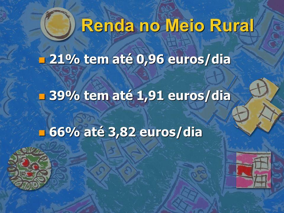 Renda no Meio Rural n 21% tem até 0,96 euros/dia n 39% tem até 1,91 euros/dia n 66% até 3,82 euros/dia