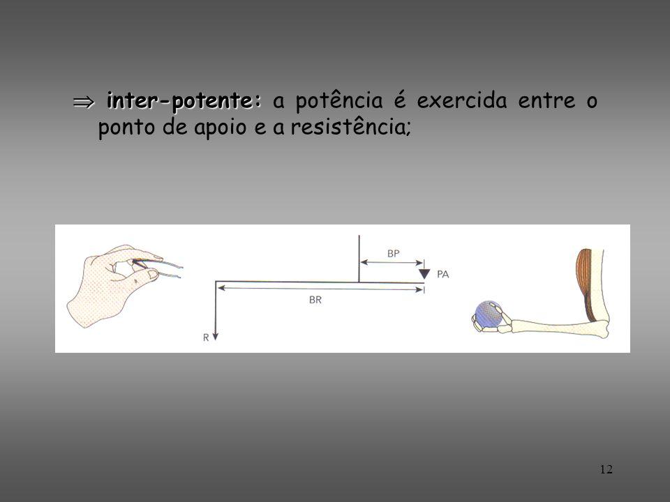 inter-potente: inter-potente: a potência é exercida entre o ponto de apoio e a resistência; 12