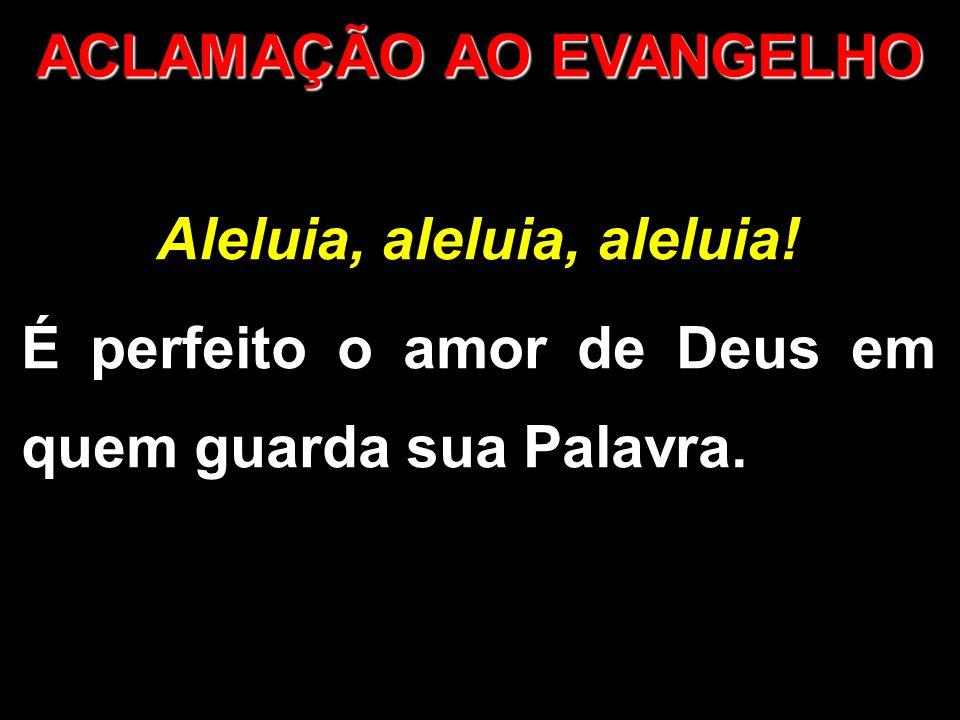 Aleluia, aleluia, aleluia.É perfeito o amor de Deus em quem guarda sua Palavra.