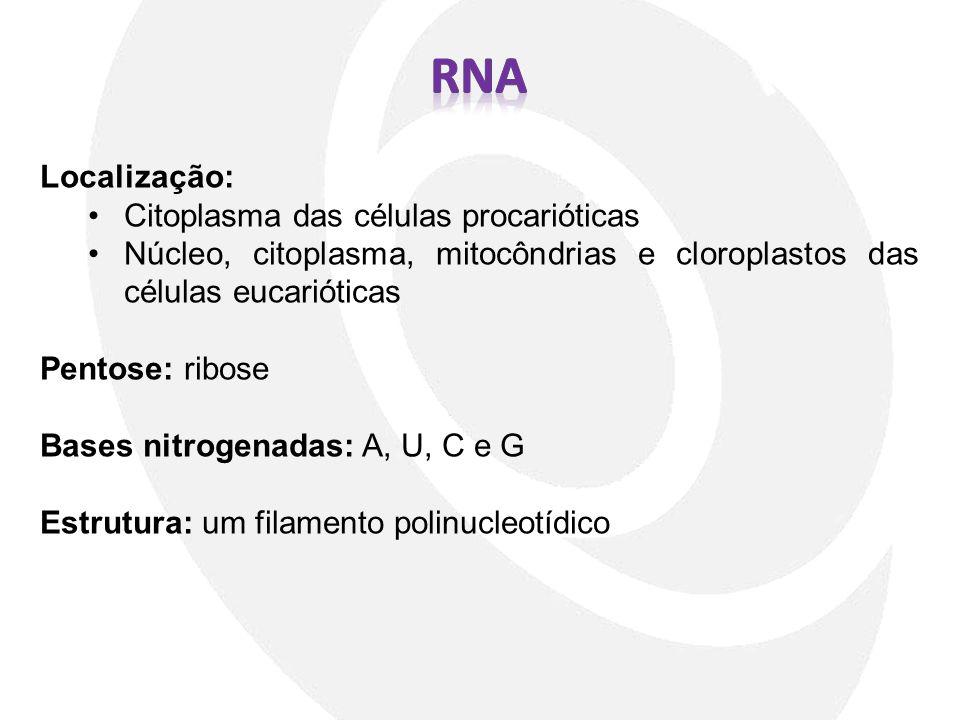 Localização: Citoplasma das células procarióticas Núcleo, citoplasma, mitocôndrias e cloroplastos das células eucarióticas Pentose: ribose Bases nitro