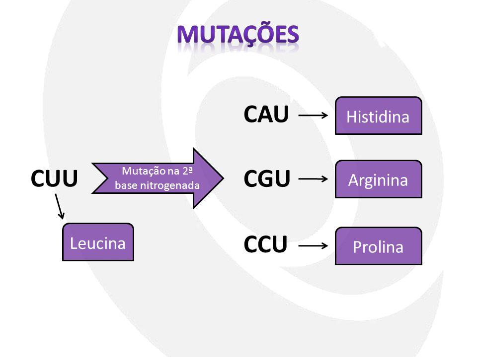 CUU Mutação na 2ª base nitrogenada CAU CGU CCU Leucina Histidina Arginina Prolina