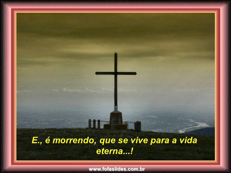 www.fofaslides.com.br Perdoando que se é perdoado... Perdoando que se é perdoado...