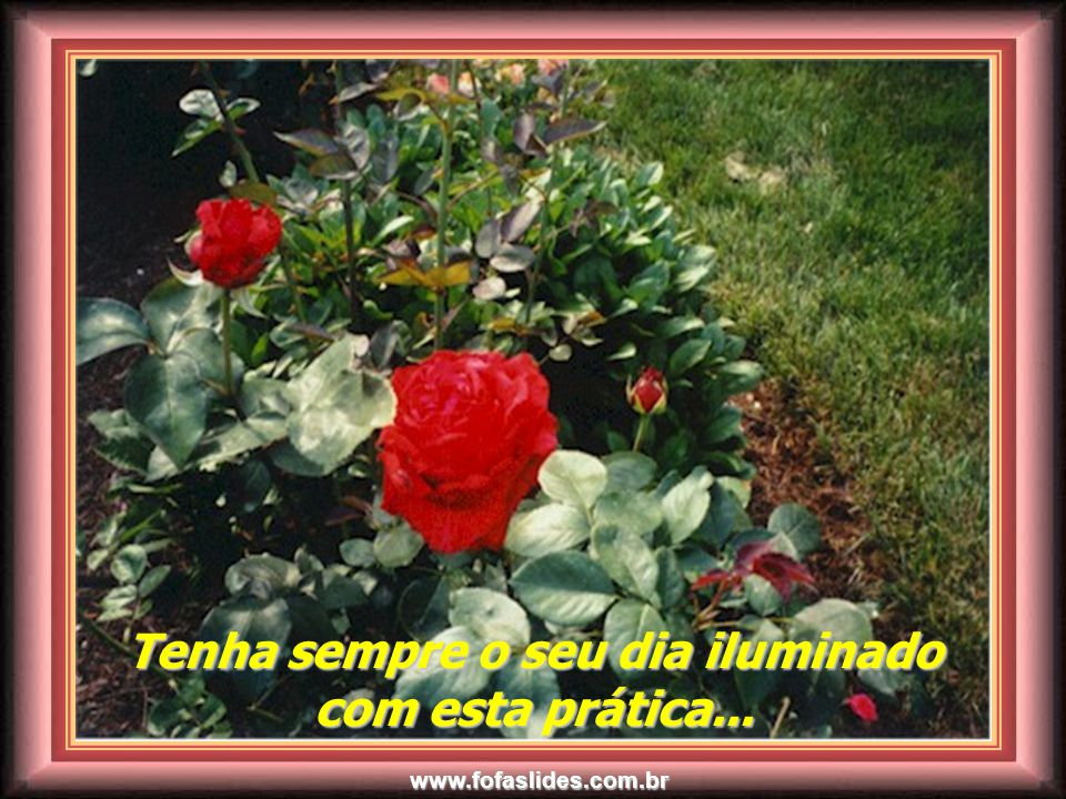 www.fofaslides.com.br E., é morrendo, que se vive para a vida eterna...!