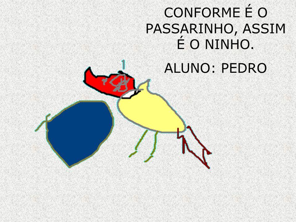 CONFORME É O PASSARINHO, ASSIM É O NINHO. ALUNO: PEDRO