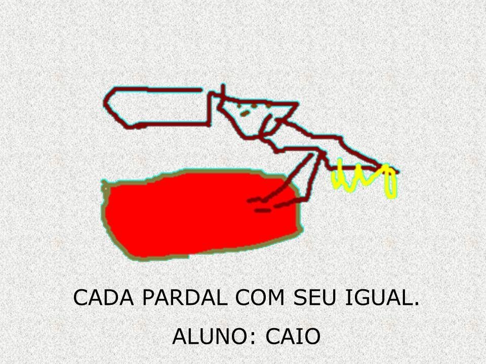 CADA PARDAL COM SEU IGUAL. ALUNO: CAIO
