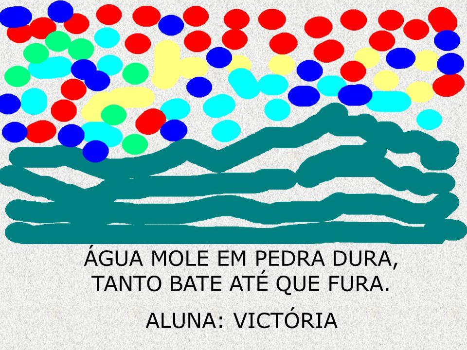 ÁGUA MOLE EM PEDRA DURA, TANTO BATE ATÉ QUE FURA. ALUNA: VICTÓRIA