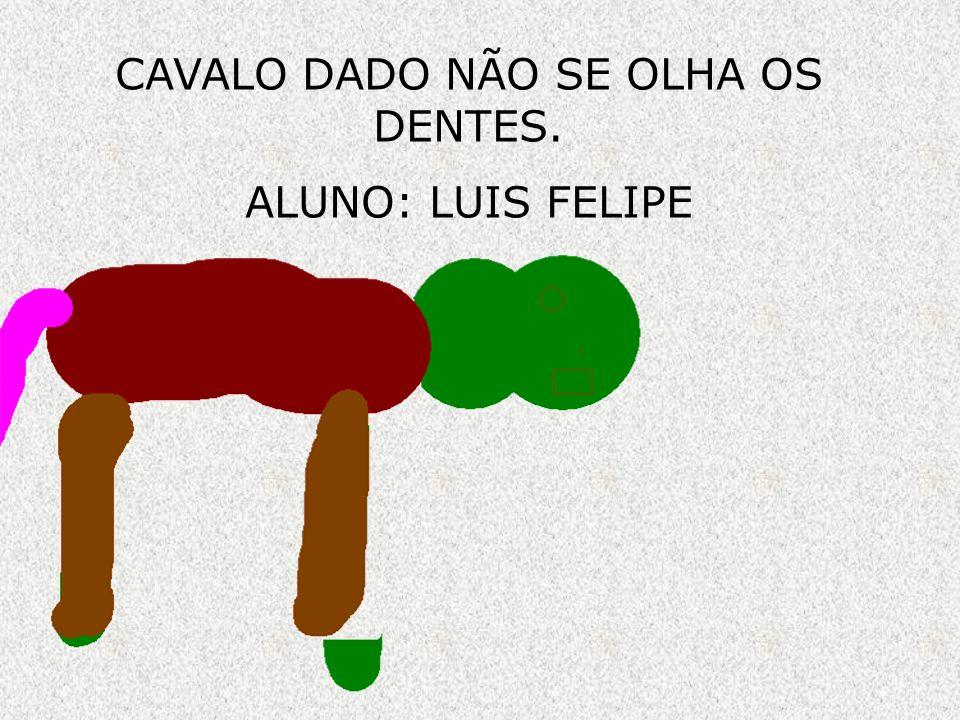 CAVALO DADO NÃO SE OLHA OS DENTES. ALUNO: LUIS FELIPE