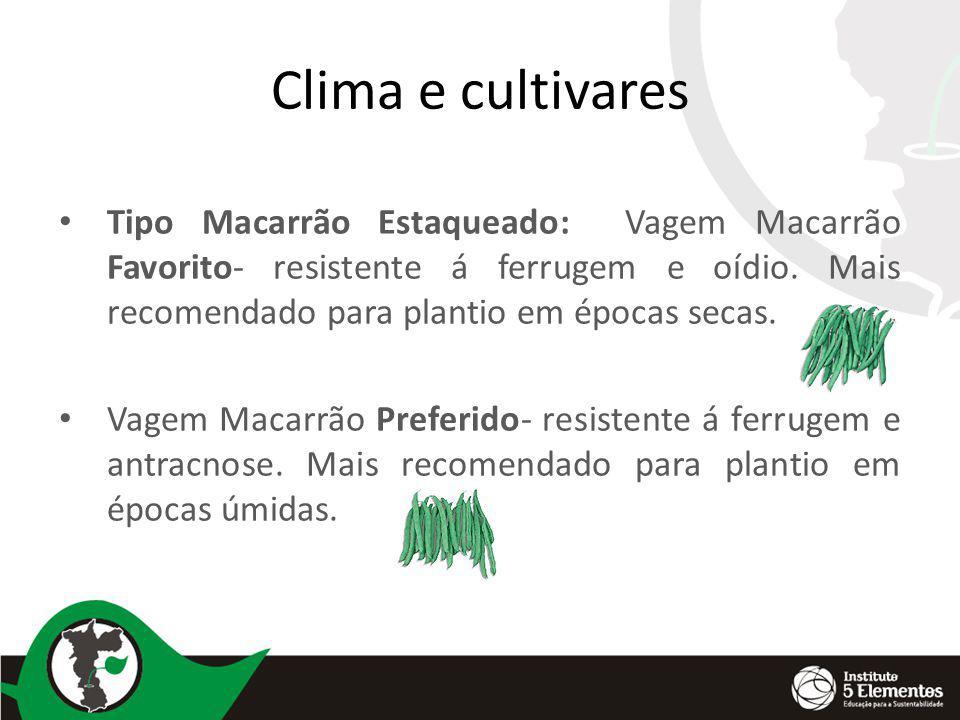 Clima e cultivares Tipo Macarrão Estaqueado: Vagem Macarrão Favorito- resistente á ferrugem e oídio. Mais recomendado para plantio em épocas secas. Va