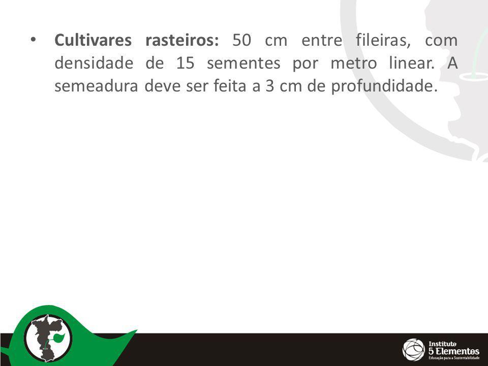 Adubação de plantio: 2 a 3 litros de esterco ou 200 gramas de bokashi por m 2 de canteiro.