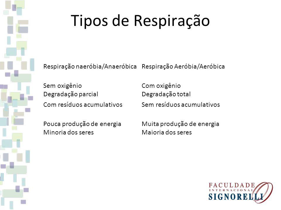 Tipos de Respiração Respiração naeróbia/AnaeróbicaRespiração Aeróbia/Aeróbica Sem oxigênio Degradação parcial Com oxigênio Degradação total Com resídu