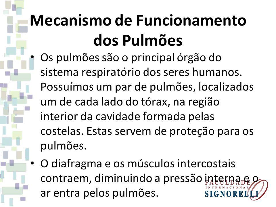 Mecanismo de Funcionamento dos Pulmões Os pulmões são o principal órgão do sistema respiratório dos seres humanos. Possuímos um par de pulmões, locali