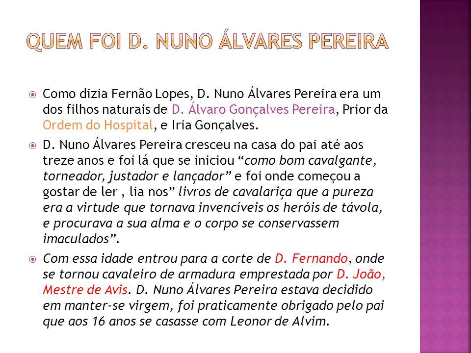 Como dizia Fernão Lopes, D. Nuno Álvares Pereira era um dos filhos naturais de D. Álvaro Gonçalves Pereira, Prior da Ordem do Hospital, e Iria Gonçalv