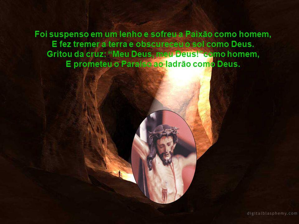 Foi suspenso em um lenho e sofreu a Paixão como homem, E fez tremer a terra e obscureceu o sol como Deus.