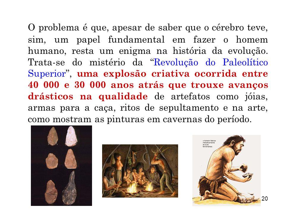 20 O problema é que, apesar de saber que o cérebro teve, sim, um papel fundamental em fazer o homem humano, resta um enigma na história da evolução. T