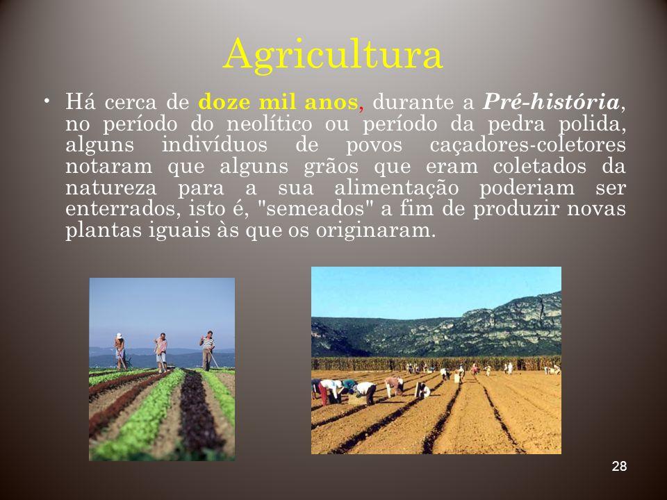 28 Agricultura Há cerca de doze mil anos, durante a Pré-história, no período do neolítico ou período da pedra polida, alguns indivíduos de povos caçad