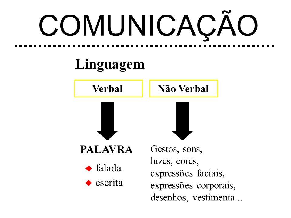 Linguagem VerbalNão Verbal PALAVRA u escrita u falada Gestos, sons, luzes, cores, expressões faciais, expressões corporais, desenhos, vestimenta...