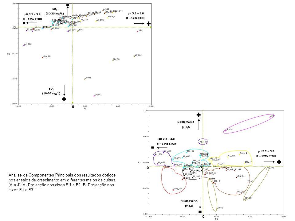 Análise de Componentes Principais dos resultados obtidos nos ensaios de crescimento em diferentes meios de cultura (A a J). A: Projecção nos eixos F 1