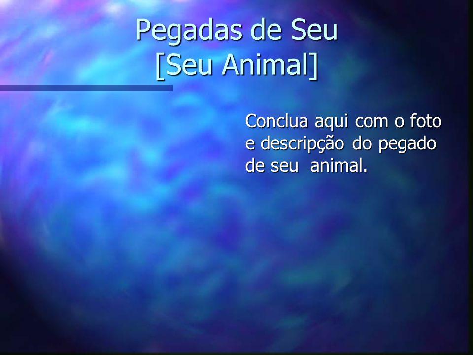 Pegadas de Seu [Seu Animal] Conclua aqui com o foto e descripção do pegado de seu animal.