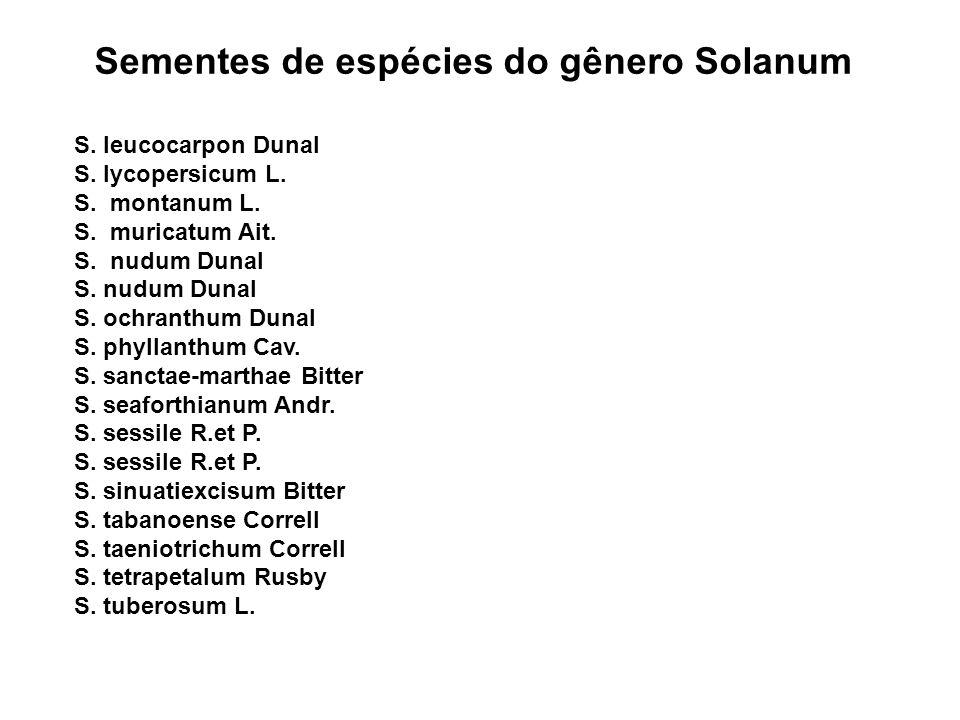 Sementes de espécies do gênero Solanum S.leucocarpon Dunal S.