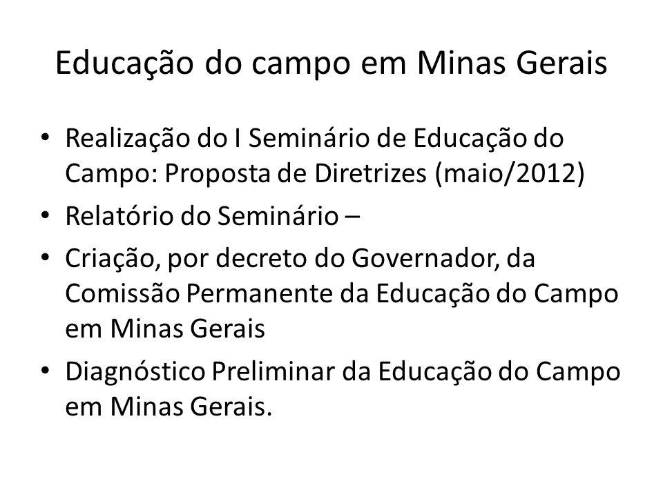 Educação do campo em Minas Gerais Realização do I Seminário de Educação do Campo: Proposta de Diretrizes (maio/2012) Relatório do Seminário – Criação,