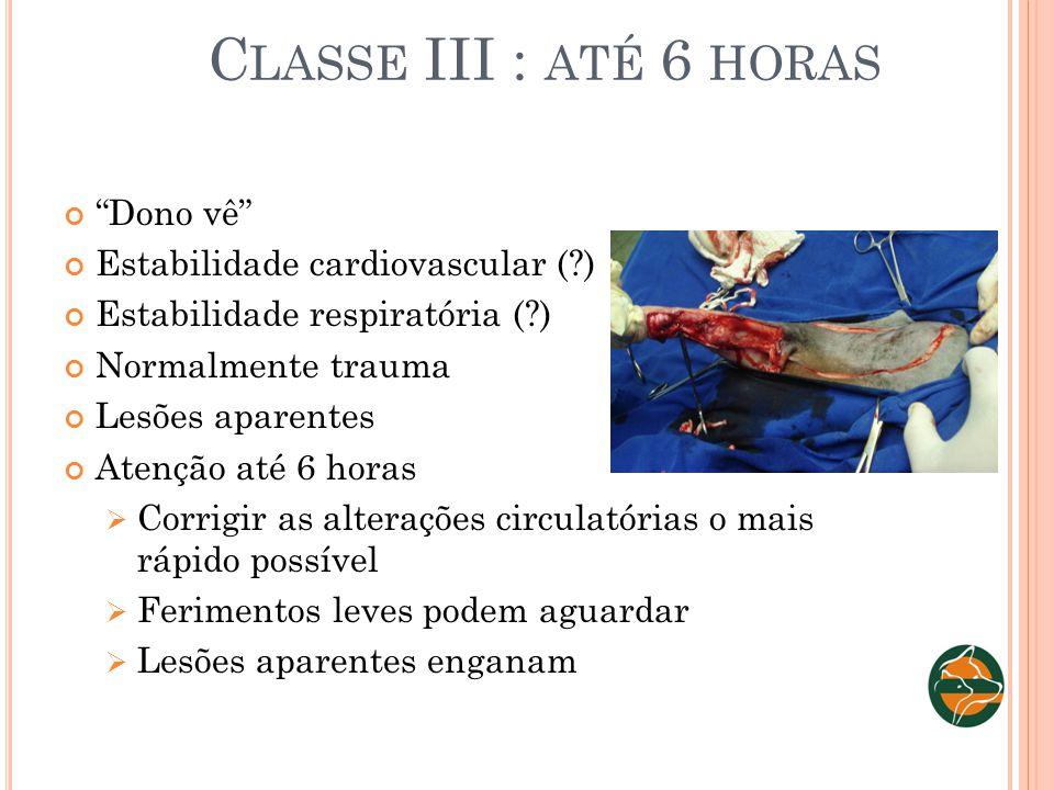 C LASSE III : ATÉ 6 HORAS Dono vê Estabilidade cardiovascular (?) Estabilidade respiratória (?) Normalmente trauma Lesões aparentes Atenção até 6 hora