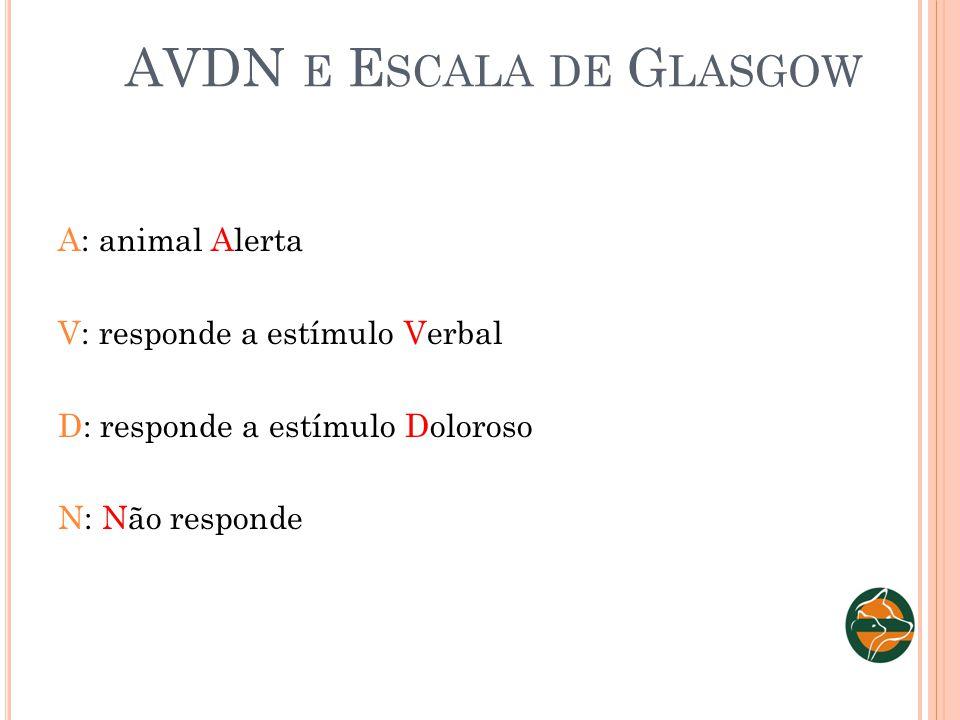 AVDN E E SCALA DE G LASGOW A: animal Alerta V: responde a estímulo Verbal D: responde a estímulo Doloroso N: Não responde