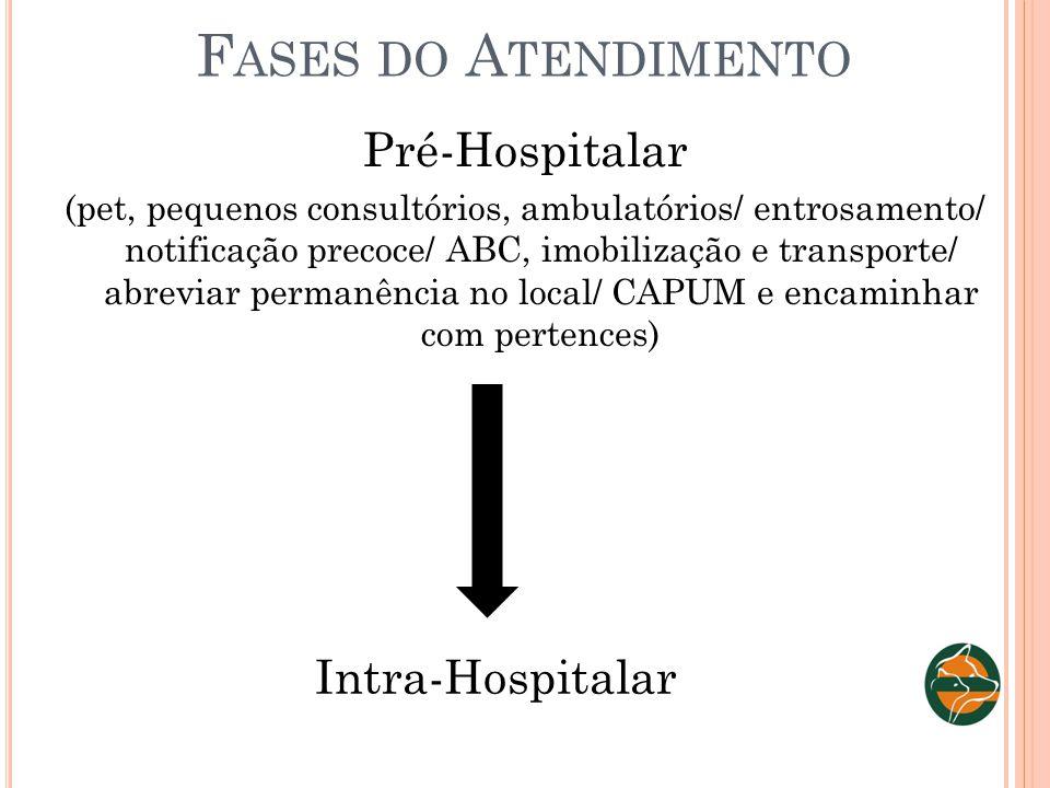 F ASES DO A TENDIMENTO Pré-Hospitalar (pet, pequenos consultórios, ambulatórios/ entrosamento/ notificação precoce/ ABC, imobilização e transporte/ ab
