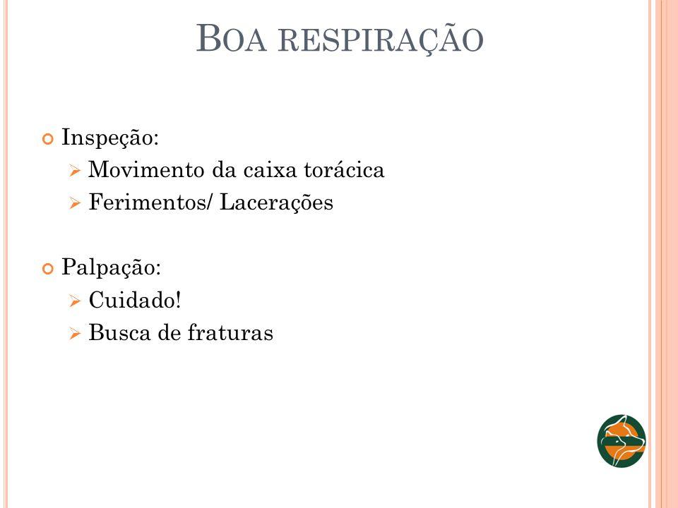 B OA RESPIRAÇÃO Inspeção: Movimento da caixa torácica Ferimentos/ Lacerações Palpação: Cuidado! Busca de fraturas