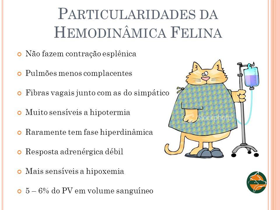 P ARTICULARIDADES DA H EMODINÂMICA F ELINA Não fazem contração esplênica Pulmões menos complacentes Fibras vagais junto com as do simpático Muito sens