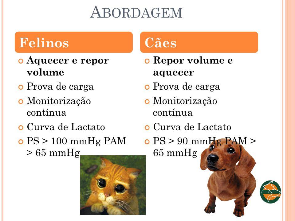 A BORDAGEM Aquecer e repor volume Prova de carga Monitorização contínua Curva de Lactato PS > 100 mmHg PAM > 65 mmHg Repor volume e aquecer Prova de c