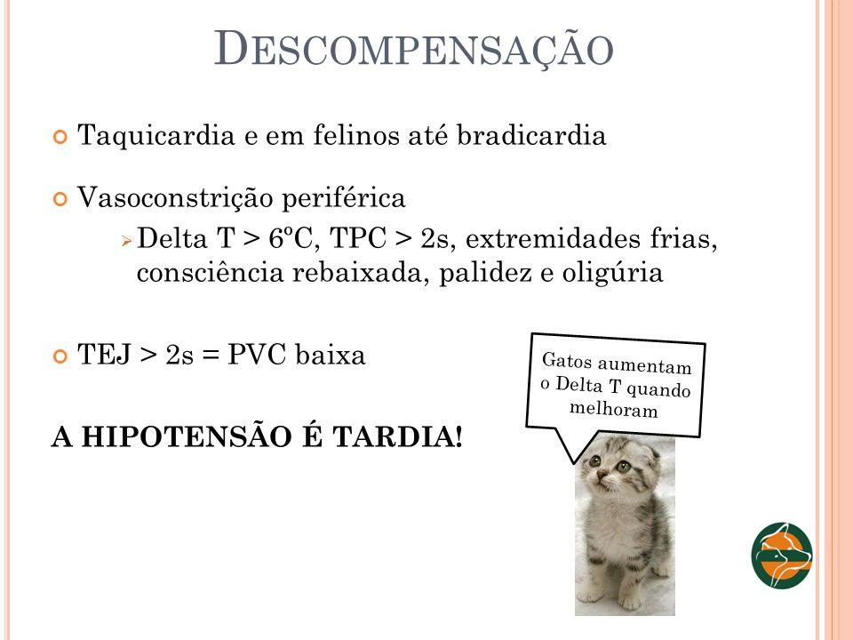 D ESCOMPENSAÇÃO Taquicardia e em felinos até bradicardia Vasoconstrição periférica Delta T > 6ºC, TPC > 2s, extremidades frias, consciência rebaixada,