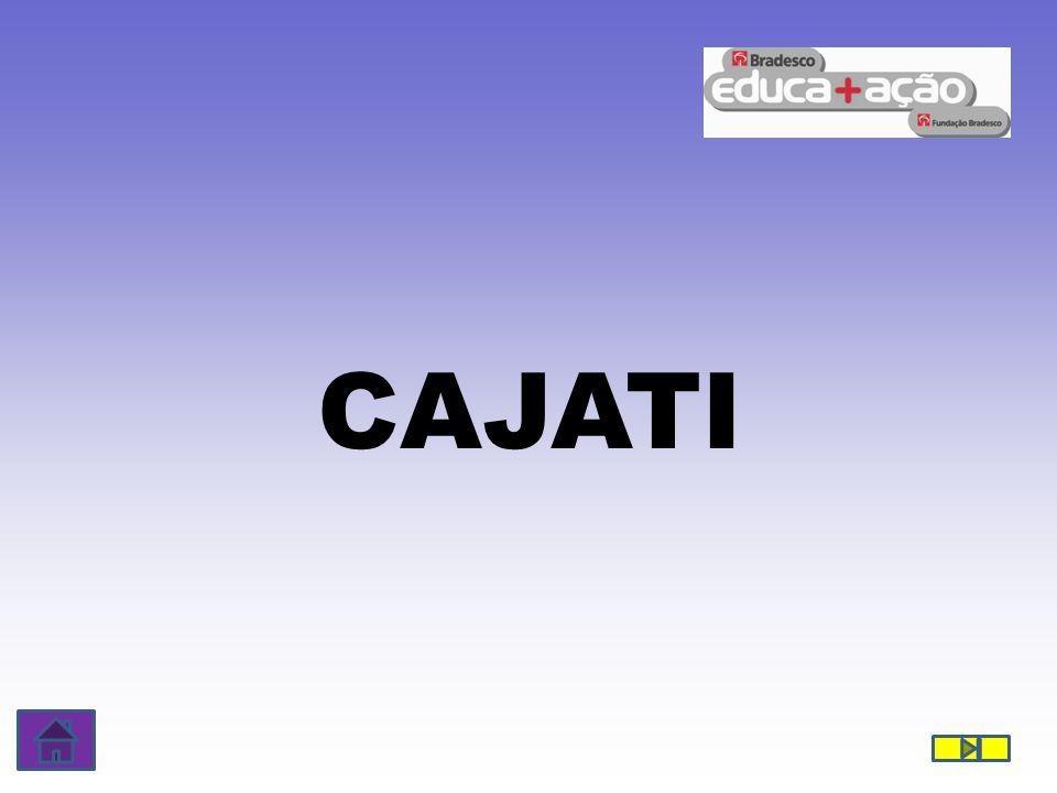 CAJATI