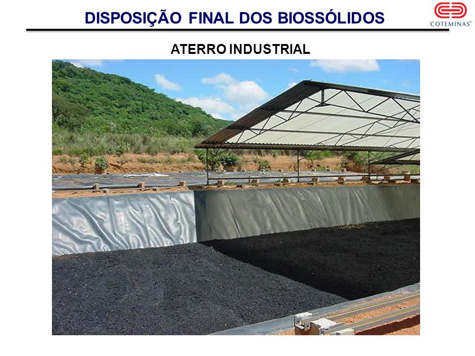 DISPOSIÇÃO FINAL DOS BIOSSÓLIDOS ATERRO INDUSTRIAL