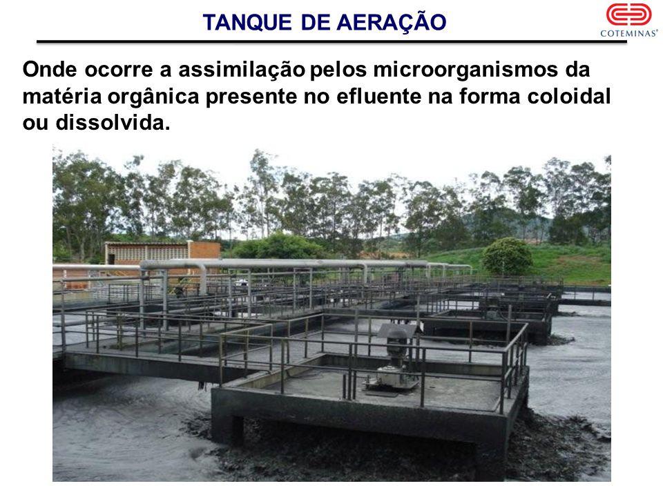 TANQUE DE AERAÇÃO Onde ocorre a assimilação pelos microorganismos da matéria orgânica presente no efluente na forma coloidal ou dissolvida.