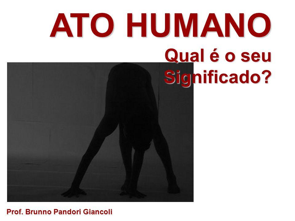 ATO HUMANO Qual é o seu Qual é o seuSignificado.Ato é a projeção da vontade de um indivíduo.