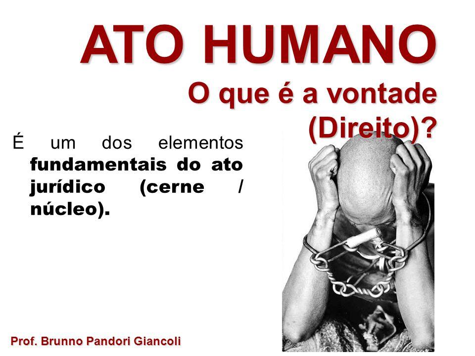 É um dos elementos fundamentais do ato jurídico (cerne / núcleo). Prof. Brunno Pandori Giancoli ATO HUMANO O que é a vontade O que é a vontade(Direito