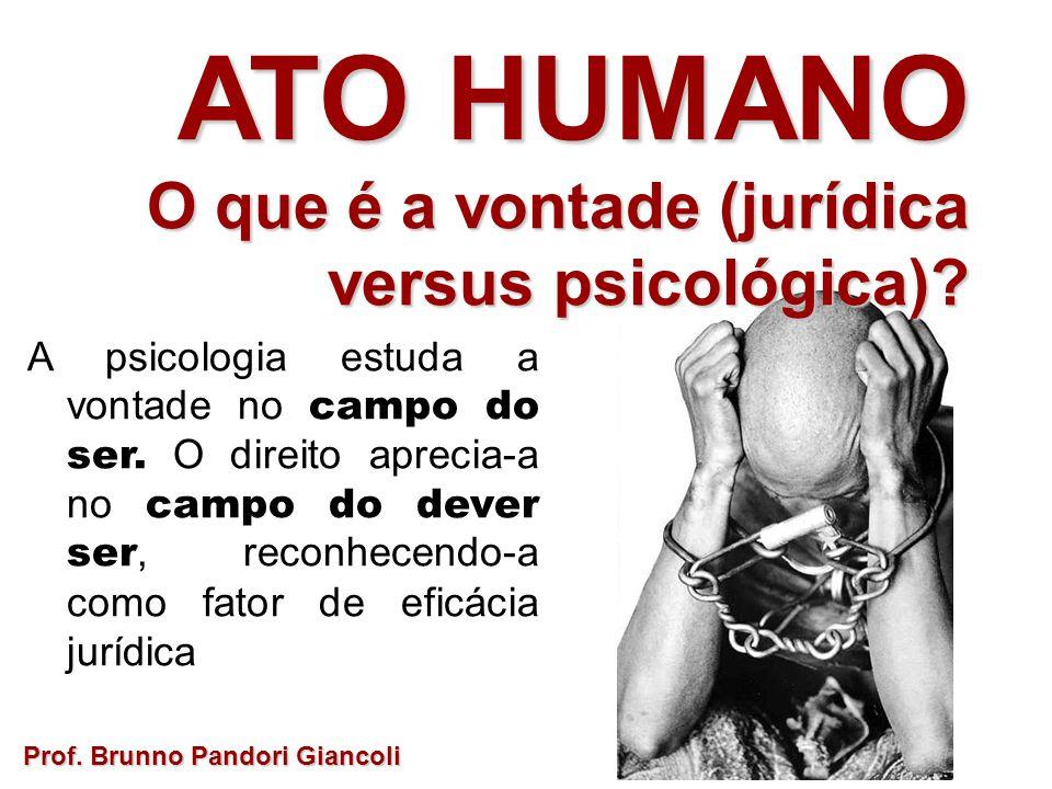 A psicologia estuda a vontade no campo do ser. O direito aprecia-a no campo do dever ser, reconhecendo-a como fator de eficácia jurídica Prof. Brunno